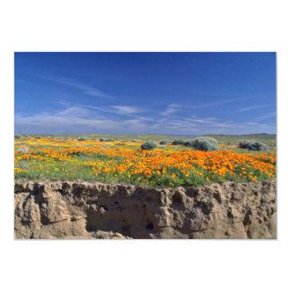Creek bank  flowers card