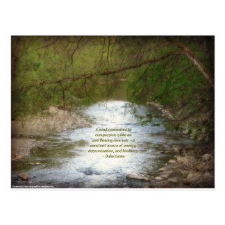 Creek & Dalai Lama Compassion Quote Postcard