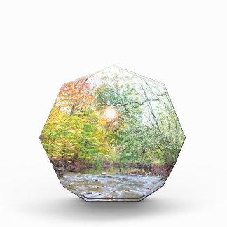 Creek - Fall Award