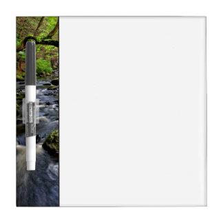 Creek flows through forest dry erase board