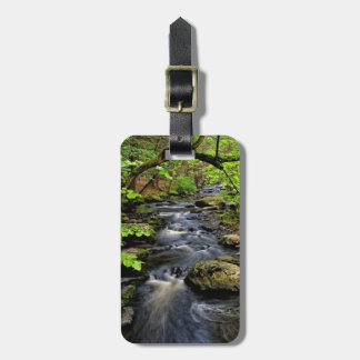 Creek flows through forest luggage tag