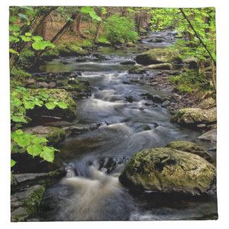 Creek flows through forest napkin