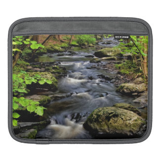 Creek flows through forest sleeve for iPads