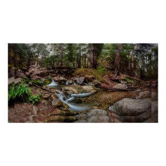 "Creek in the Redwoods (55"" x 26.75"") Poster"