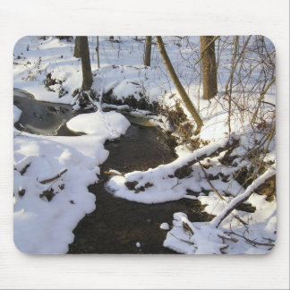 creek in winter mouse pad