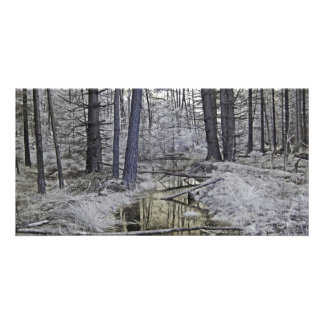 Creek Infrared Photography Photo Card
