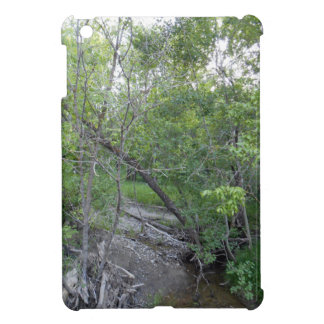 Creek iPad Mini Case