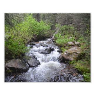 Creek near Sagehen, ID - #0790 Photo Print