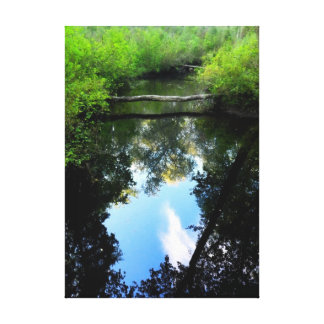 Creek Reflections Wrapped Canvas Canvas Print