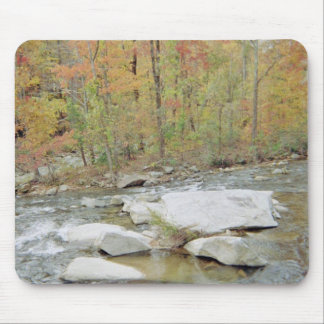 Creek Up In The Mountains Mouse Pad