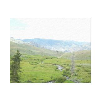 Creek Valley Canvas Print