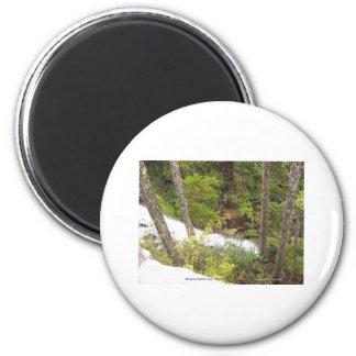 Creek Waterfalls Nature Photo Mt Rainier Nat Park 2 Inch Round Magnet