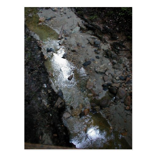 Creekbed después de la precipitación postales
