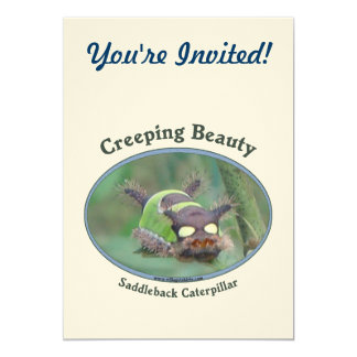 Creeping Beauty Card