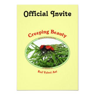 Creeping Beauty Red Velvet Ant Bug Card