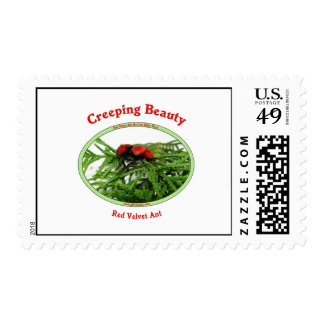 Creeping Beauty Red Velvet Ant Bug Postage Stamps