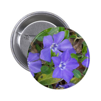 Creeping Blue Flowers 2 Inch Round Button
