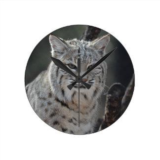 Creeping Bobcat Round Clock