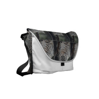 Creeping Bobcat Small Messenger Bag