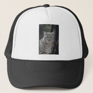 Creeping Bobcat Trucker Hat