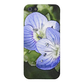Creeping Speedwell (Veronica filiformis) Flowers iPhone SE/5/5s Cover