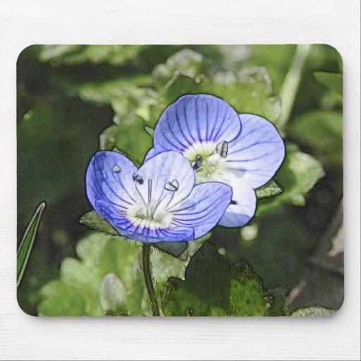 Creeping Speedwell (Veronica filiformis) Flowers Mouse Pads