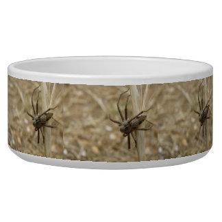 Creepy Crawly Spider Dog Bowl
