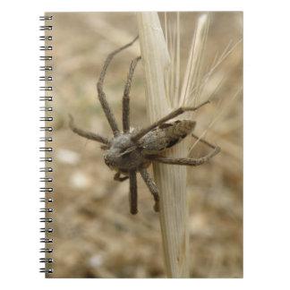 Creepy Crawly Spider Notebook