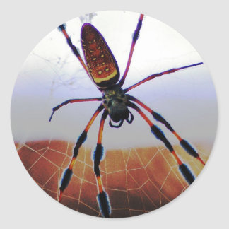Creepy Crawly Spider on the Web Classic Round Sticker