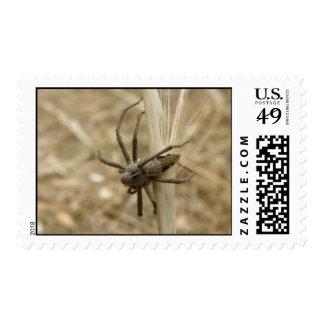 Creepy Crawly Spider Postage Stamps