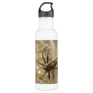 Creepy Crawly Spider Water Bottle