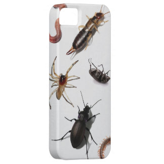 Creepy Crawly Your Phone Is Bugged iPhone SE/5/5s Case