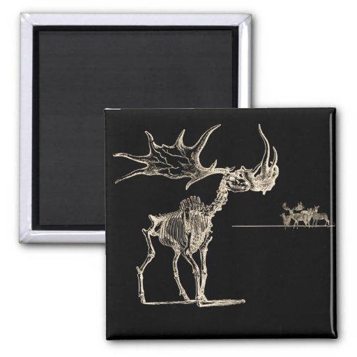 Creepy Elk Skeleton with Deer Animal Bones Fridge Magnet