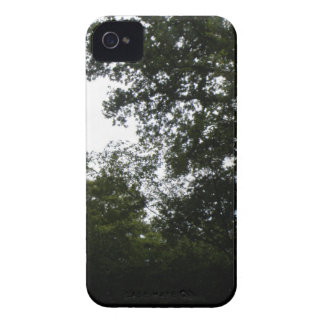 Creepy Forest Blackberry Bold Case