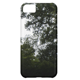 Creepy Forest iPhone 5 Case