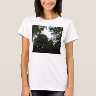 Creepy Forest Ladies T Shirt
