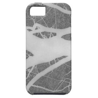 Creepy Gray Tree Abstract iPhone 5/5S Cases