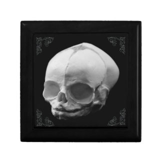 Creepy Infant Skull Gothic gift box