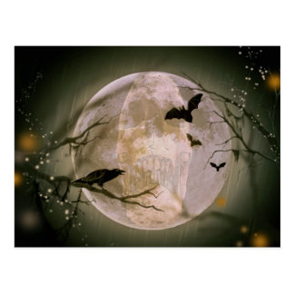 Creepy Skull in Full Moon with Flying Birds & Tree Postcard