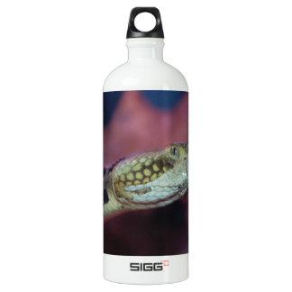 Creepy Snake Aluminum Water Bottle