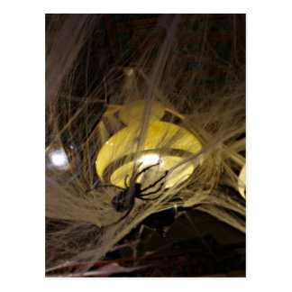 Creepy Spider and Cobwebs for Halloween Postcard