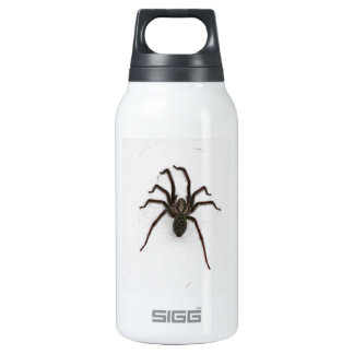 Creepy Spider Insulated Water Bottle
