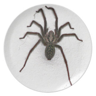 Creepy Spider Dinner Plate