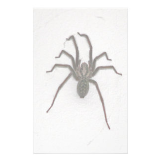 Creepy Spider Personalized Stationery