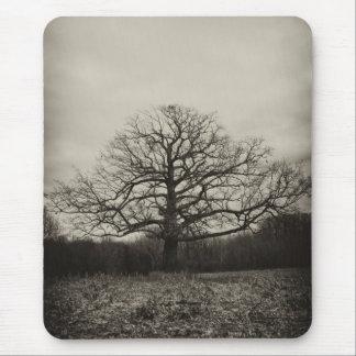 creepy tree mouse pad
