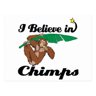 creo en chimpancés tarjeta postal