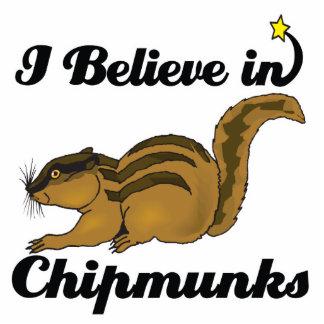 creo en chipmunks fotoescultura vertical