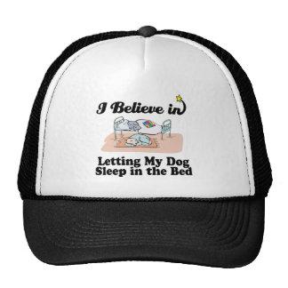 creo en dejar sueño del perro en cama gorros