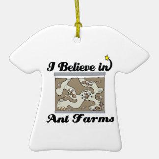 creo en granjas de la hormiga adornos