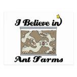creo en granjas de la hormiga postal